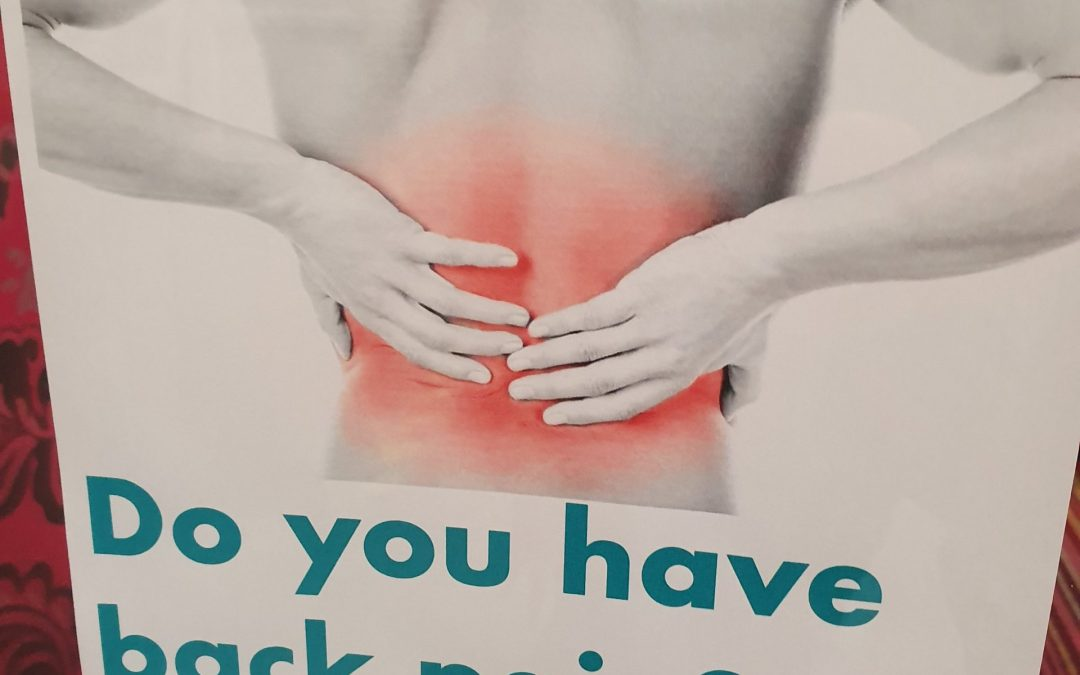 Struggling with back Pain? maybe our new trader could help